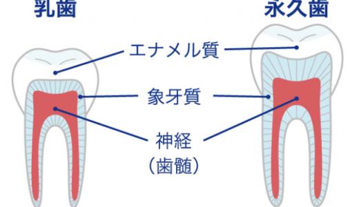 あなたの虫歯はどのレベル?【段階別】主な虫歯の治療法